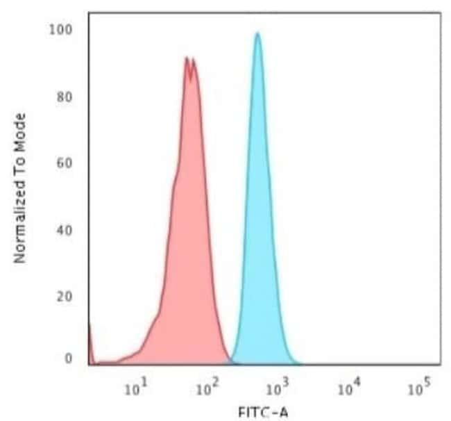 Cytokeratin 15 Rabbit anti-Human, Rat, Bovine, Clone: KRT15/2103R, Novus