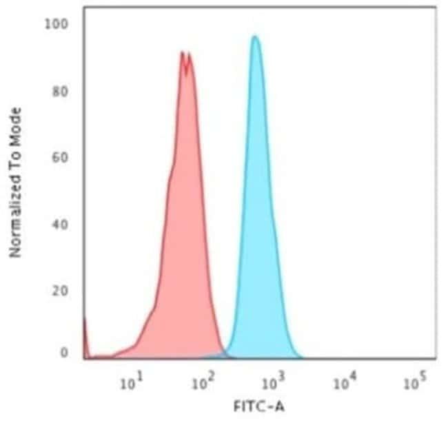 Cytokeratin 15 Mouse anti-Human, Clone: KRT15/2958, Novus Biologicals:Antibodies:Primary