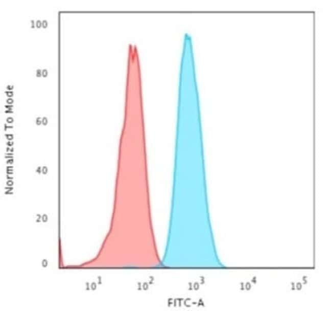 Cytokeratin 4 Mouse anti-Human, Clone: KRT4/2804, Novus Biologicals:Antibodies:Primary