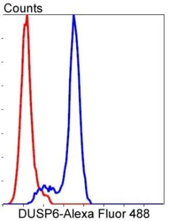 DUSP6a Rabbit anti-Human, Clone: SR39-09, Novus Biologicals 100µL