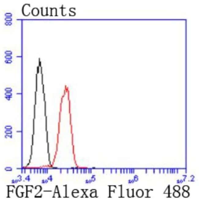 FGFbasic/FGF2 Rabbit anti-Human, Clone: JM28-10, Novus Biologicals 100µL
