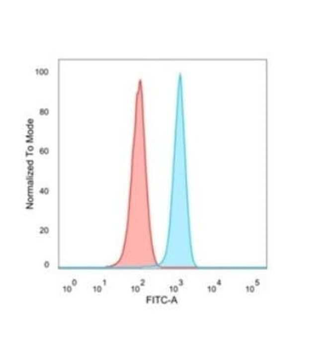 FRA2 Mouse anti-Human, Clone: PCRP-FOSL2-1B1, Novus Biologicals:Antibodies:Primary