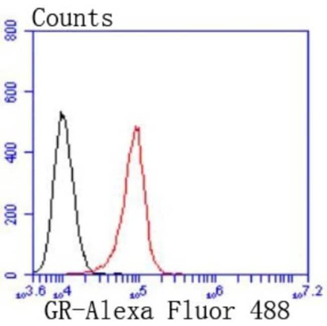 GR/NR3C1 Rabbit anti-Human, Mouse, Rat, Fish, Zebrafish, Clone: JF0952,