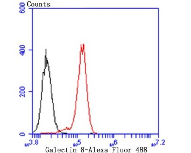 Galectin-8 Rabbit anti-Human, Mouse, Rat, Clone: JB85-35, Novus Biologicals