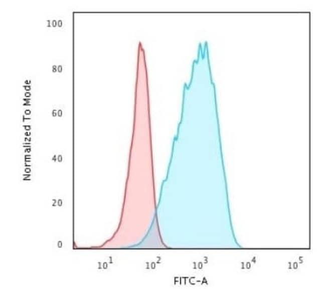 HLA DPB1 Rabbit anti-Human, Clone: HLA-DPB1/2862R, Novus Biologicals:Antibodies:Primary