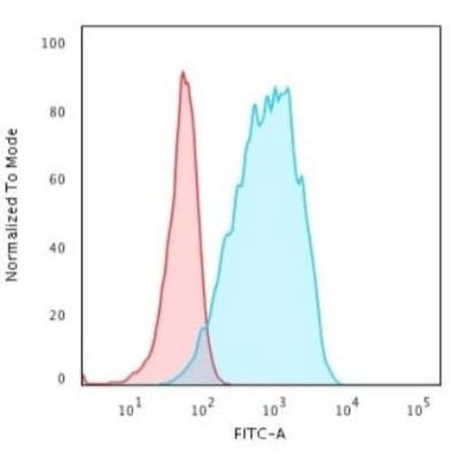 HLA DQ Rabbit anti-Human, Porcine, Clone: HLA-DQA1/2866R, Novus Biologicals:Antibodies:Primary