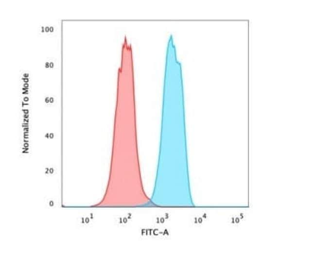 HNF-3 alpha/FoxA1 Mouse anti-Human, Rat, Clone: rFOXA1/1515, Novus Biologicals:Antibodies:Primary