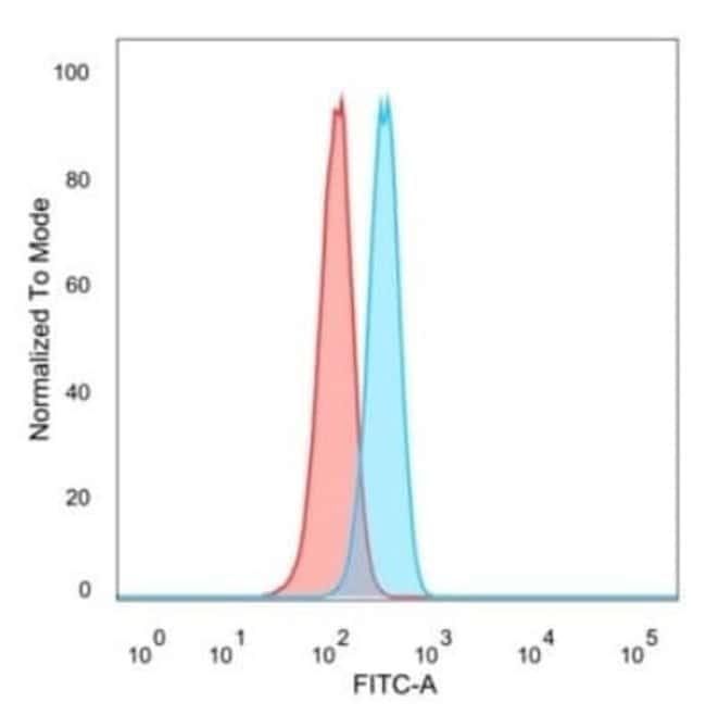 Homez Mouse anti-Human, Clone: PCRP-HOMEZ-1A5, Novus Biologicals:Antibodies:Primary