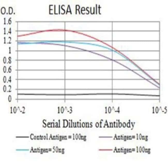 IL-9R Mouse anti-Human, Rat, Clone: 4A11H2, Novus Biologicals 0.1 ml; Unconjugated