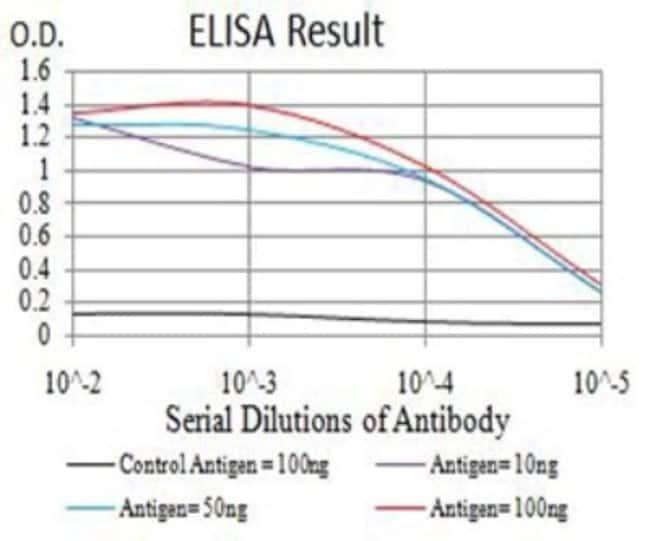 JMJD2B Mouse anti-Human, Mouse, Clone: 3A6H6, Novus Biologicals 0.1 ml;