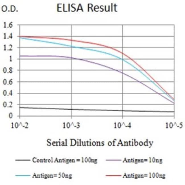 KIR3DL1 Mouse anti-Human, Rat, Monkey, Clone: 6D9F6, Novus Biologicals