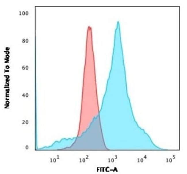 LMO2 Mouse anti-Human, Clone: LMO2/1971, Novus Biologicals:Antibodies:Primary