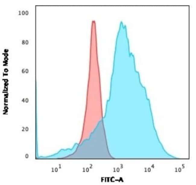 LMO2 Rabbit anti-Human, Clone: LMO2/3147R, Novus Biologicals:Antibodies:Primary
