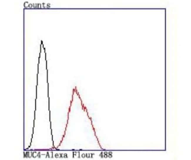 MUC-4 Rabbit anti-Human, Clone: JM19-36, Novus Biologicals 100µL