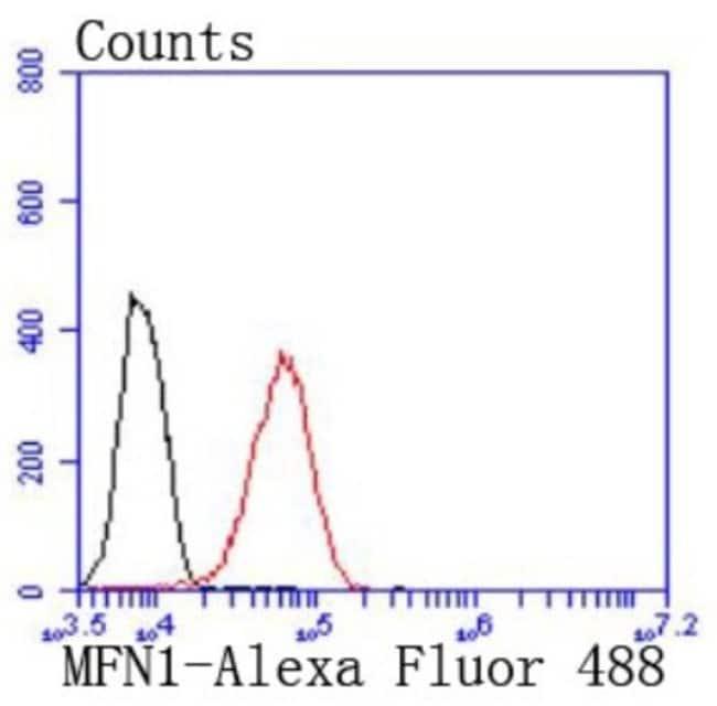 Mitofusin1 Rabbit anti-Human, Clone: JF0954, Novus Biologicals 100µL