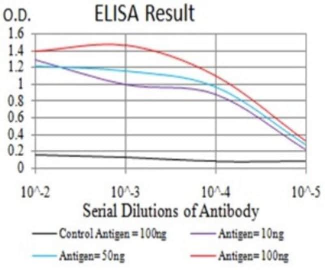 Mucin 5AC Mouse anti-Human, Clone: 7E9D8, Novus Biologicals 0.1 ml; Unconjugated:Antibodies