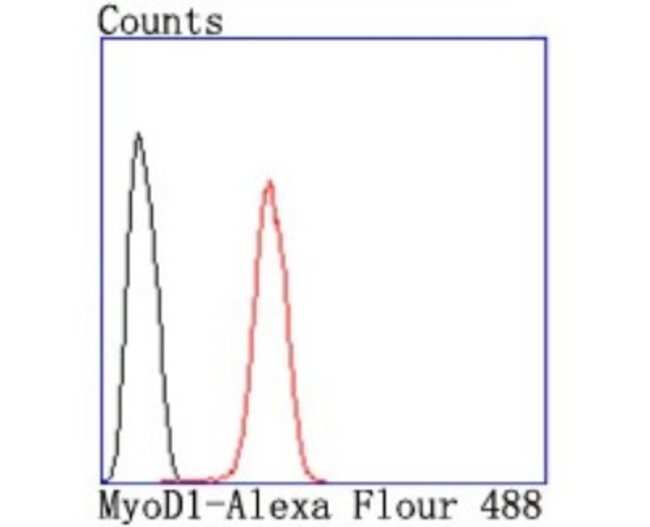 MyoD Rabbit anti-Human, Clone: JM10-72, Novus Biologicals 100μL