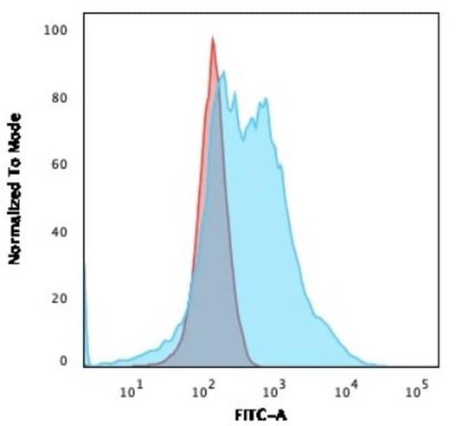 NPM1, Mouse anti-Human, Clone: NPM1/3286, Novus Biologicals:Antibodies:Primary