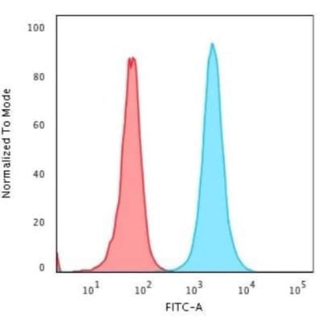 NPM1 Mouse anti-Human, Clone: rNPM1/1901, Novus Biologicals:Antibodies:Primary
