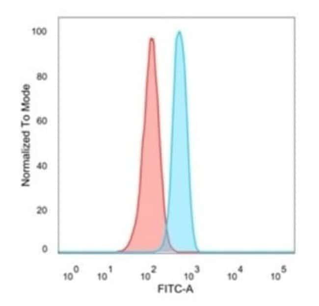 OVOL2 Mouse anti-Human, Clone: PCRP-OVOL2-2A1, Novus Biologicals:Antibodies:Primary