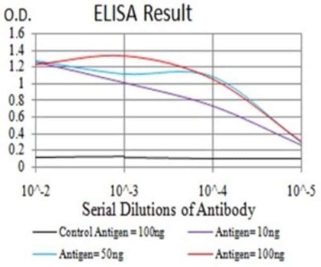 POMC Mouse anti-Human, Clone: 6D2B5, Novus Biologicals 0.1 ml; Unconjugated