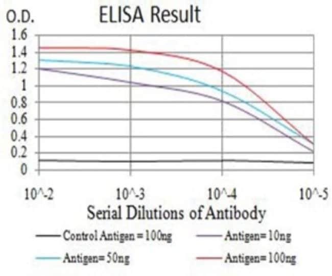 PRKAG3 Mouse anti-Human, Clone: 1C5D10, Novus Biologicals 0.1 ml; Unconjugated:Antibodies
