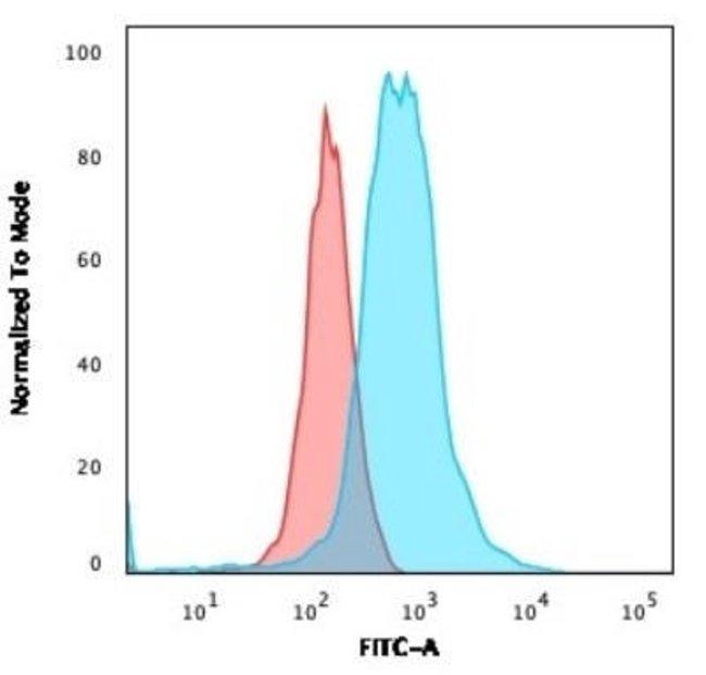 ROR gamma/RORC/NR1F3 Mouse anti-Human, Clone: RORC/2941, Novus Biologicals:Antibodies:Primary