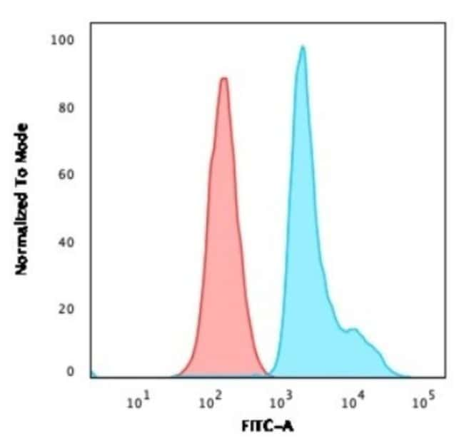 RPSA, Mouse anti-Human, Clone: RPSA/2699, Novus Biologicals:Antibodies:Primary