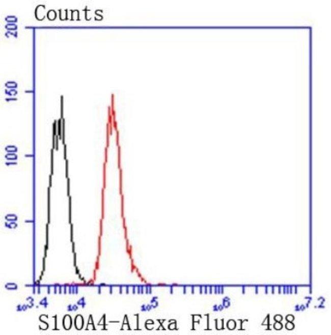 S100A4 Rabbit anti-Human, Clone: SD200-08, Novus Biologicals 100µL