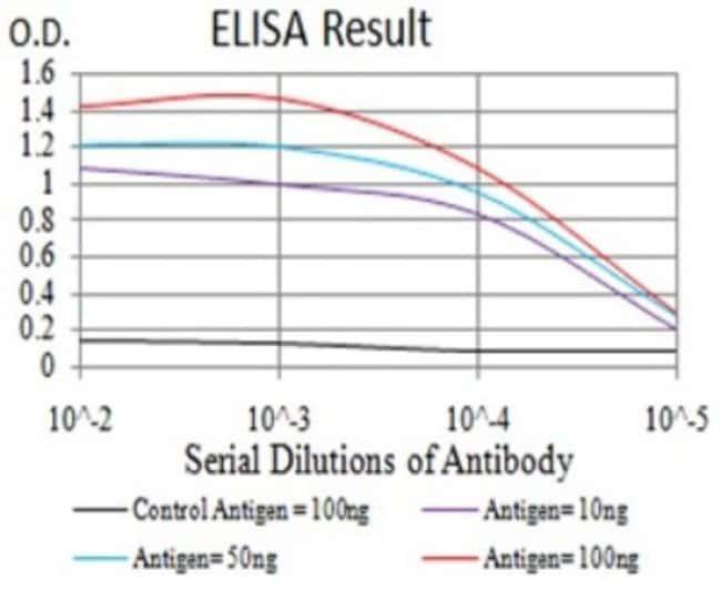 SELS Mouse anti-Human, Clone: 5G4A10, Novus Biologicals 0.1 ml; Unconjugated:Antibodies