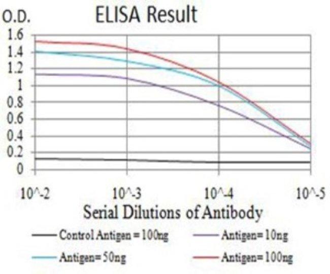 SMARCA1 Mouse anti-Human, Mouse, Clone: 2H7B9, Novus Biologicals 0.1 ml;