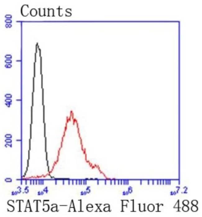STAT5A Rabbit anti-Human, Clone: SC66-09, Novus Biologicals 100µL