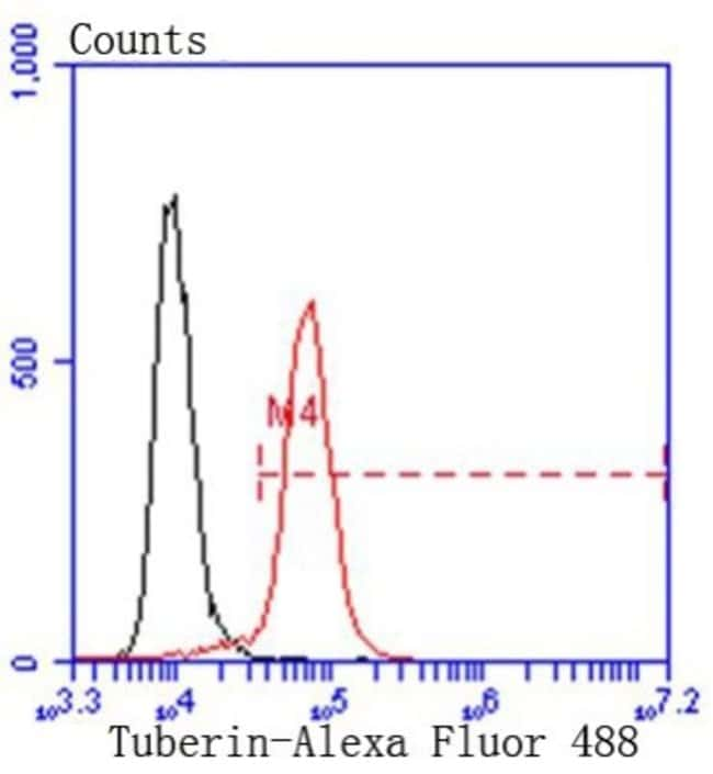 TSC2 Rabbit anti-Human, Clone: SC05-59, Novus Biologicals 100µL