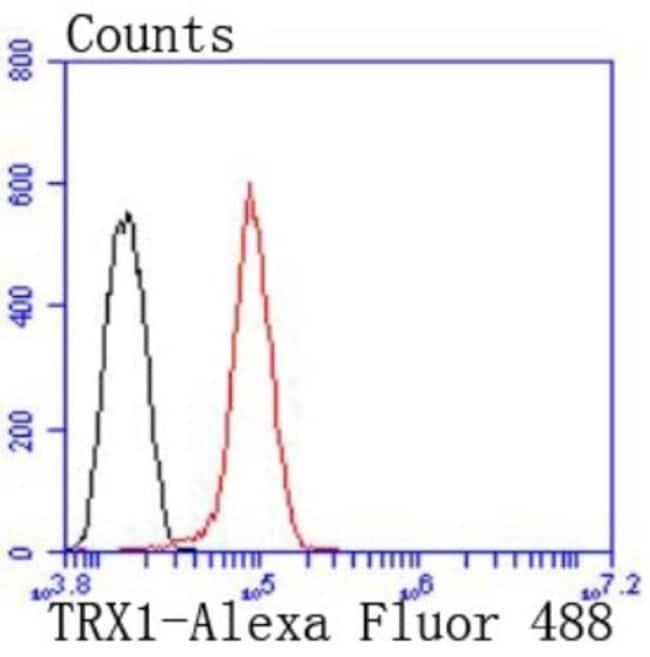 Thioredoxin-1 Rabbit anti-Human, Clone: JF101-8, Novus Biologicals 100µL