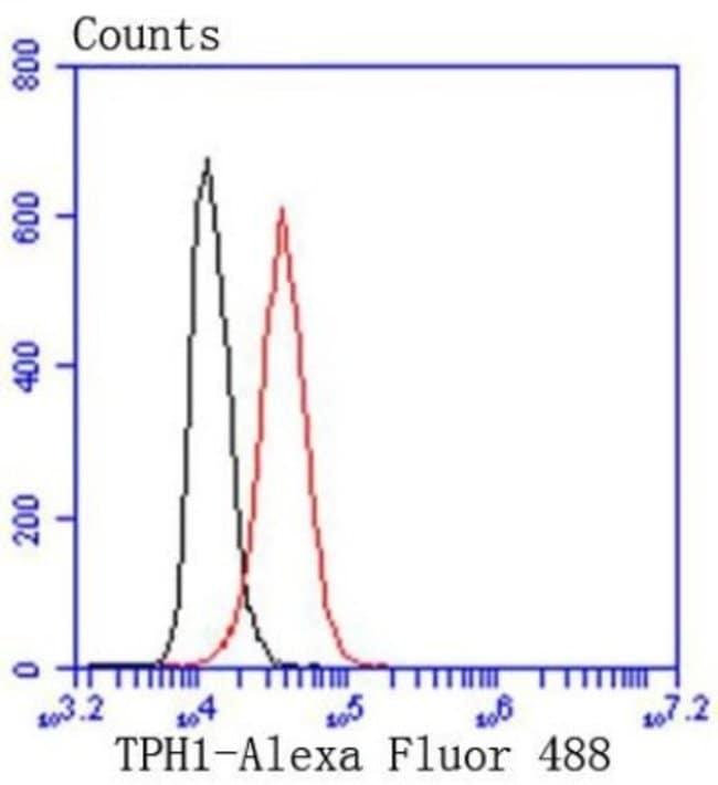 TryptophanHydroxylase1/TPH-1 Rabbit anti-Human, Clone: SC53-07, Novus Biologicals