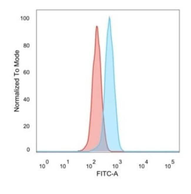 ZBTB7C Mouse anti-Human, Clone: PCRP-ZBTB7C-4E12, Novus Biologicals:Antibodies:Primary