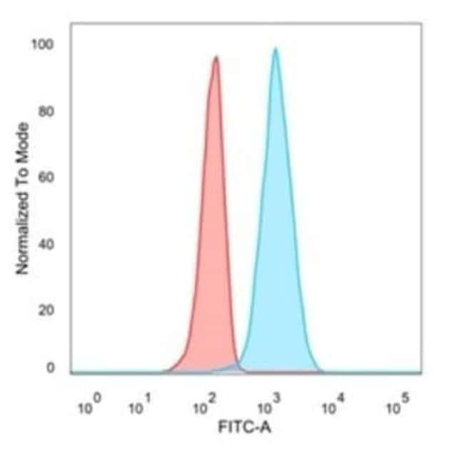 eIF4E Mouse anti-Human, Clone: PCRP-EIF4E-1D3, Novus Biologicals:Antibodies:Primary