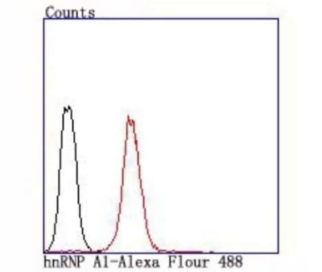 hnRNPA1 Rabbit anti-Human, Clone: JA39-21, Novus Biologicals 100µL