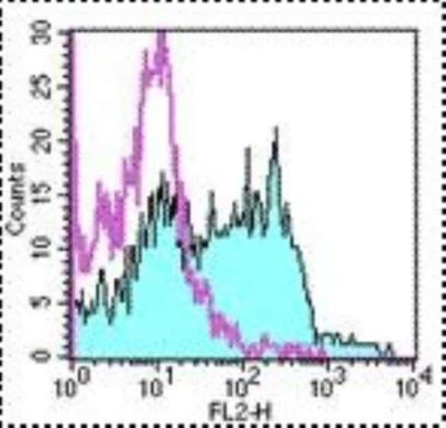 Rat anti-Aminopeptidase A/ENPEP, Clone: 6C3, Novus Biologicals 0.5mg; Unlabeled:Life