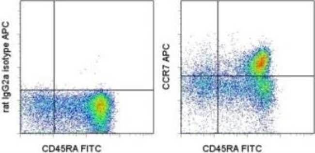 Rat anti-CCR7, Clone: 3D12, Novus Biologicals 0.1mg; Unlabeled:Life Sciences