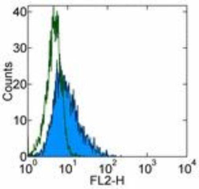Mouse anti-CD117/c-kit, Clone: YB5.B8, Novus Biologicals:Antibodies:Primary