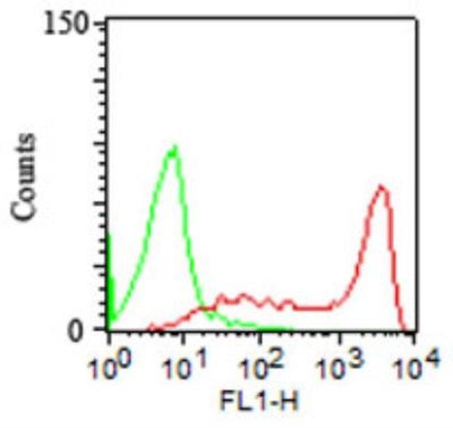 Mouse anti-CD45RA, Clone: 158-4D3, Novus Biologicals:Antibodies:Primary