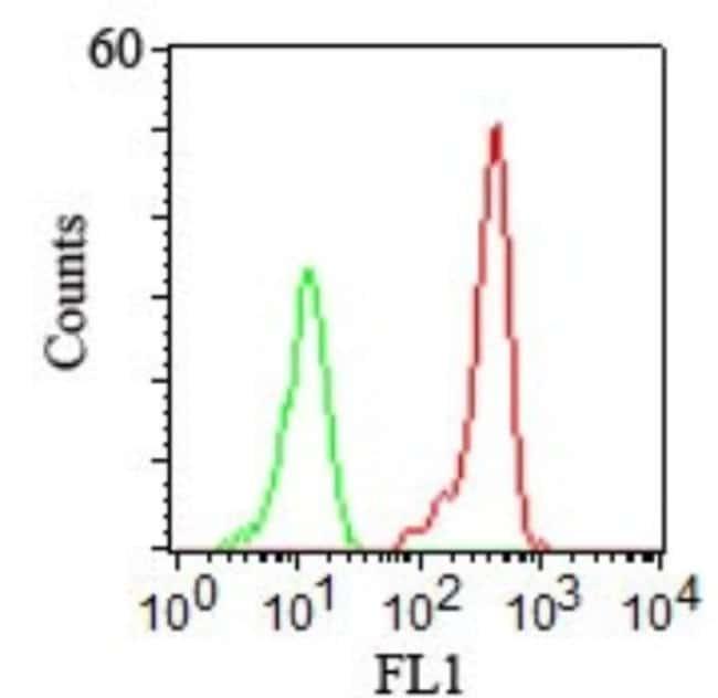 Mouse anti-CD46, Clone: 122.2, Novus Biologicals:Antibodies:Primary Antibodies