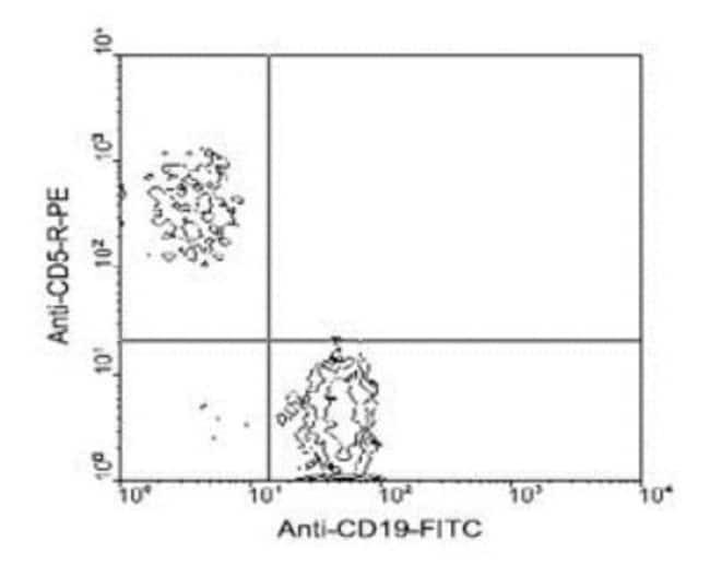 anti-CD5, Clone: 4H8E6, Novus Biologicals 0.5mg; Unlabeled:Life Sciences