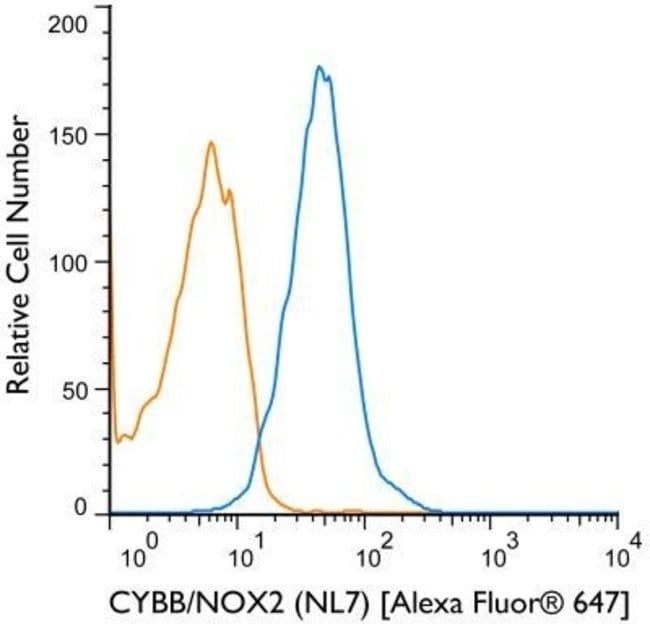 Mouse anti-CYBB/NOX2, Clone: NL7, Novus Biologicals 0.1mg; Unlabeled:Life