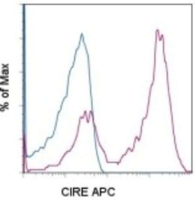 Rat anti-DC-SIGN/CD209, Clone: LWC06, Novus Biologicals:Antibodies:Primary