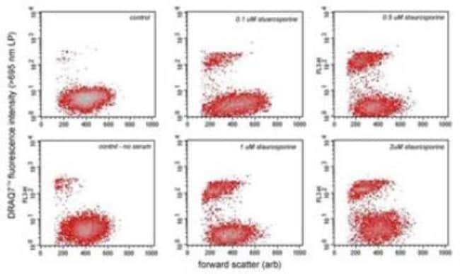 Novus BiologicalsDRAQ7:Protein Analysis Reagents:Protein Assays