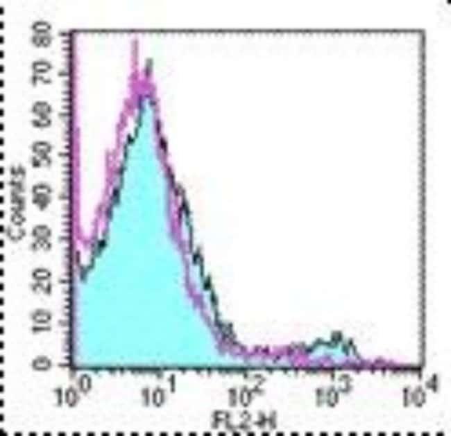 Rat anti-Dendritic Cell Marker, Clone: 33D1, Novus Biologicals 0.5mg; Unlabeled:Life