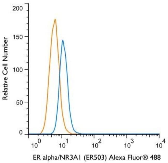 Mouse anti-Estrogen Receptor, Clone: ER503, Novus Biologicals:Antibodies:Primary