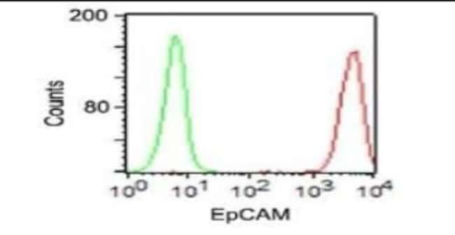 Mouse anti-EpCAM/TROP1, Clone: VU1D9, Novus Biologicals:Antibodies:Primary